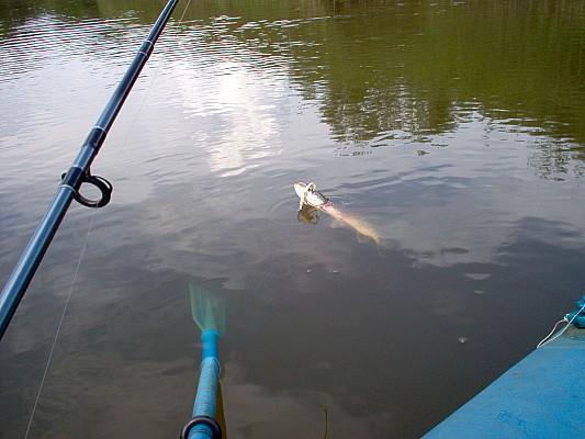 Как в игре рыбалка поймать щуку